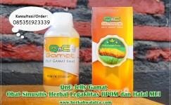 Obat Sinusitis Herbal Ampuh Tanpa Operasi √ Tumbuhan Alami