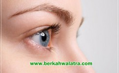 Manfaat Eyevit Untuk Mata Paling Lengkap Dan Harganya