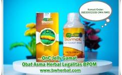 Obat Asma Herbal Untuk Anak Dan Dewasa Yang Ampuh √ 100% Alami