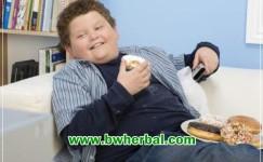 Cara Mengatasi Kolesterol Tinggi Pada Anak Yang Mudah Tanpa Obat