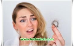 Penyebab Rambut Rontok Parah Pada Wanita Dan Cara Mengatasinya