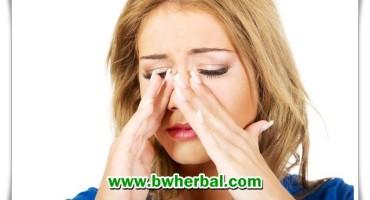 Cara Mengobati Sinusitis Secara Alami Dengan Ramuan Herbal