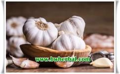 Manfaat Bawang Putih Bagi Kesehatan Jika Di Konsumsi Setiap Hari