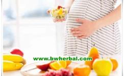 8 Pilihan Camilan Untuk Ibu Hamil Yang Sehat Dan Lezat