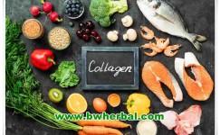 6 Jenis Makanan Yang Mengandung Kolagen Tinggi, Bisa Buat Awet Muda!