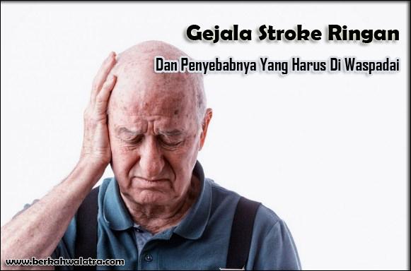 Gejala Stroke Ringan dan Penyebabnya Yang Harus Diwaspadai