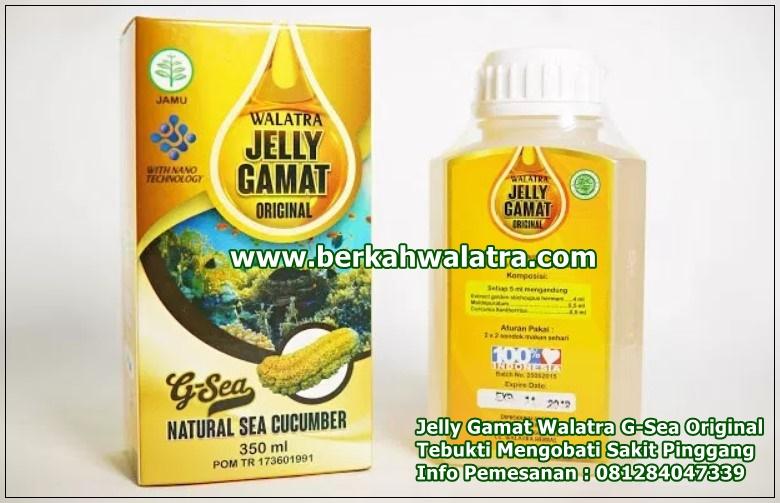 obat sakit pinggang jelly gamat walatra g-sea original