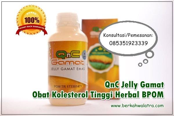 Obat Kolesterol Tinggi Herbal BPOM √ Tanaman Tradisional Alami