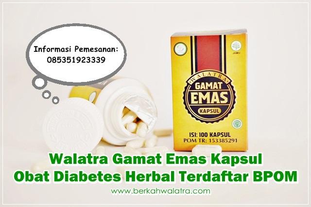 Obat Diabetes Herbal Terdaftar BPOM √ Tanaman Tradisional Alami