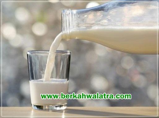 efek samping susu kambing