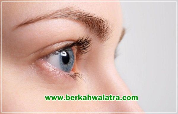 manfaat eyevit