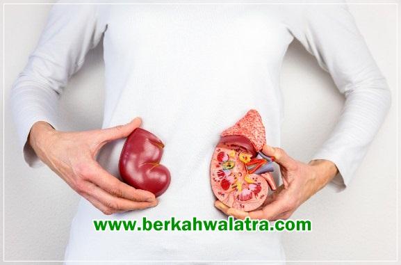 pantangan makanan untuk penyakit batu ginjal