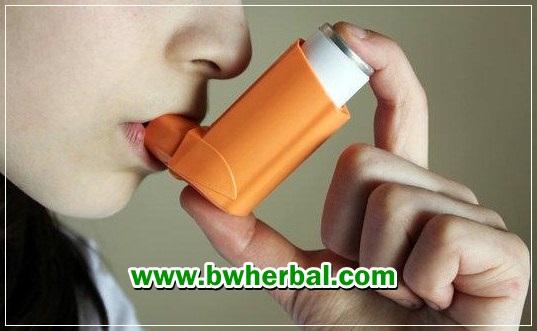 penyebab asma kambuh