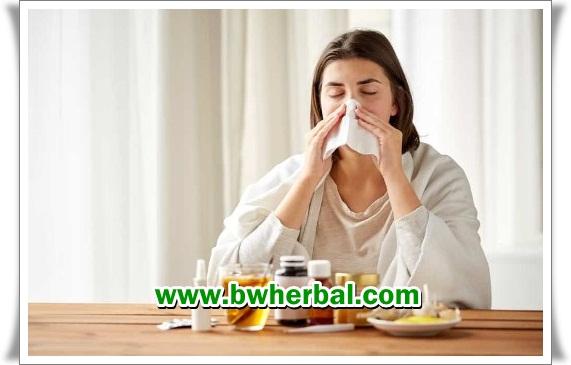 makanan sehat untuk penderita sinusitis