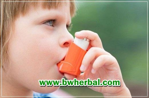 makanan yang baik bagi penderita asma