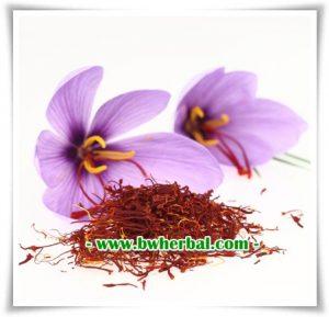 Bunga Saffron khasmir Grade AA Asli Dari Afganistan