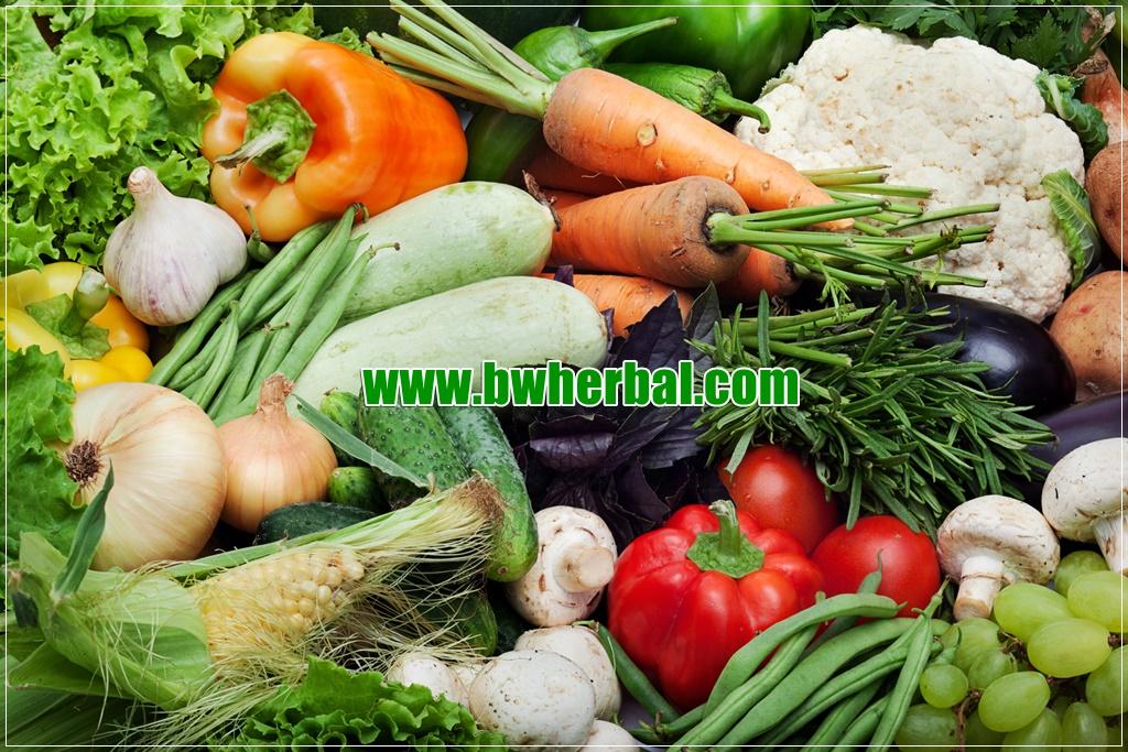 makanan peningkat sistem imun