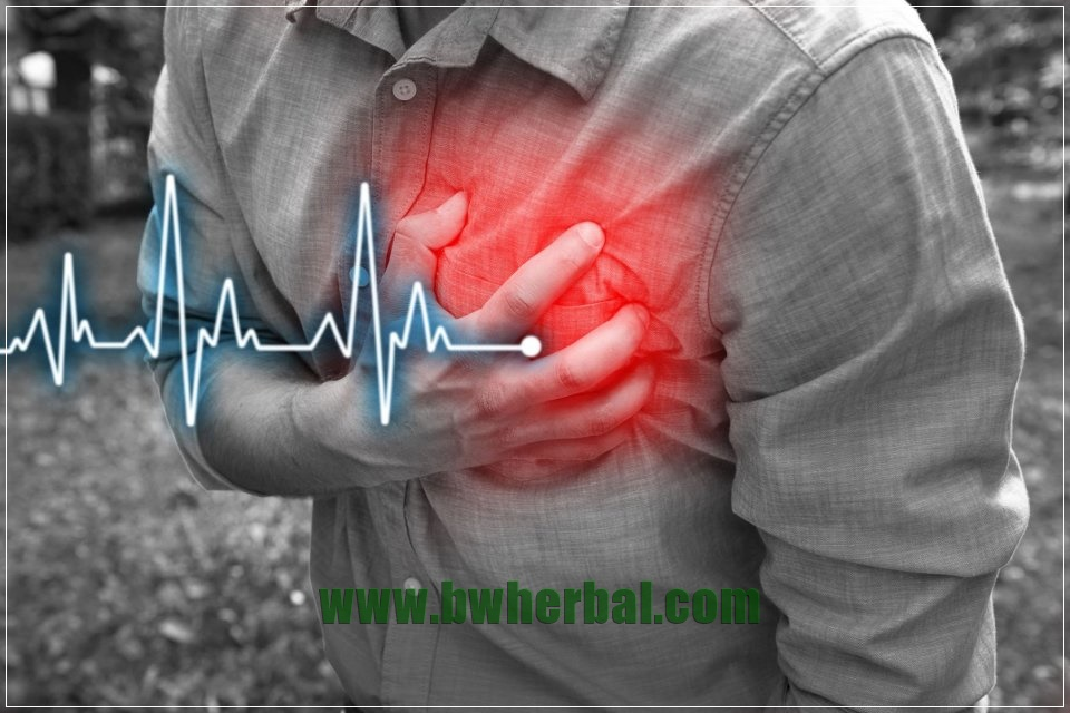 tips mencegah serangan jantung