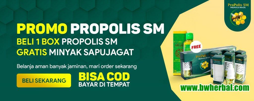 promo propolis